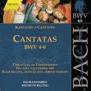 Cantatas Vol.2 (BWV 4,5,6)
